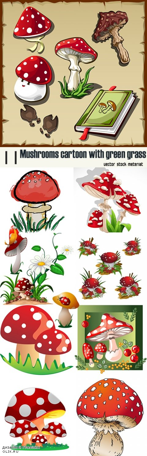 Mushrooms cartoon with green grass