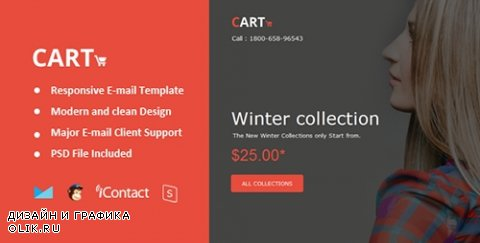 t - Cart Mail v1.0 - Responsive E-mail + Online Access - 13454813