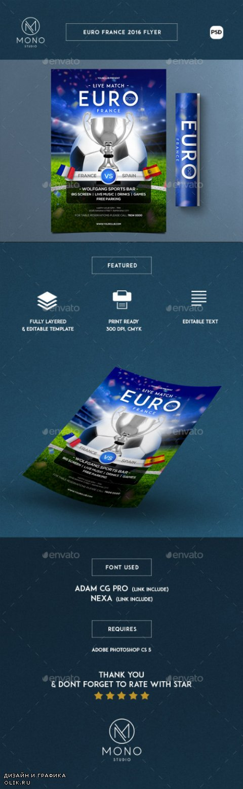 Euro Cup 2016 Flyer 16264509