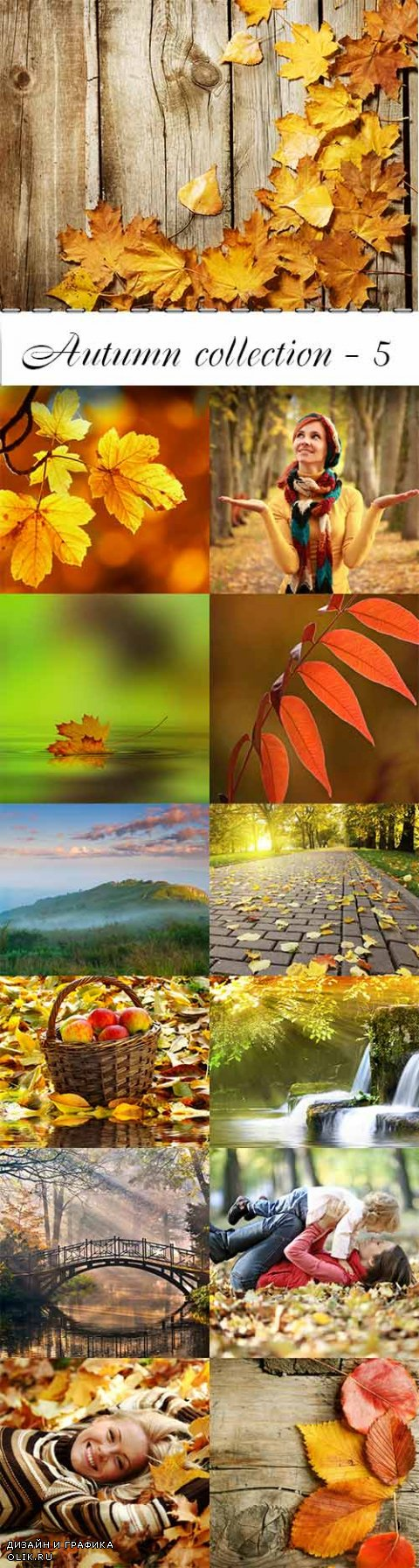 Autumn collection raster graphics - 5