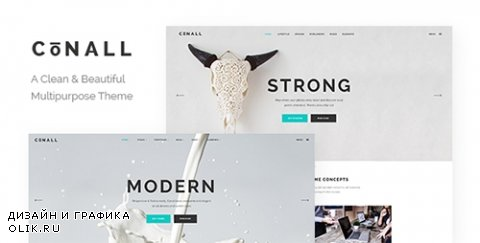 t - Conall v1.4 - A Clean & Beautiful Multipurpose Theme - 15245311