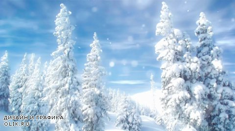 Winter forest in the snow HD