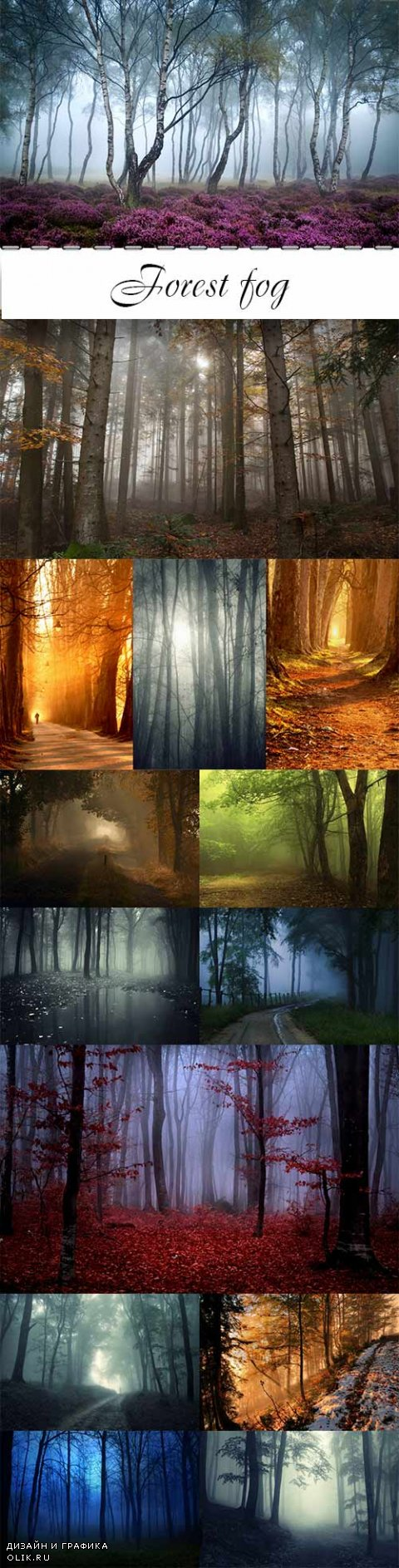 Forest fog raster graphics