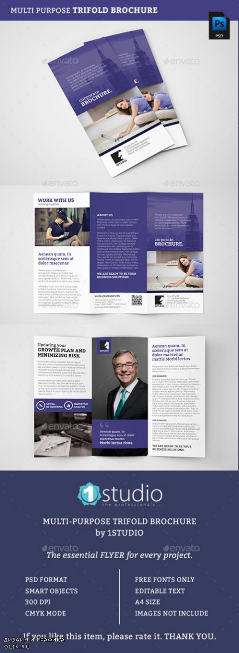 Corporate Trifold Brochure 05 12790464