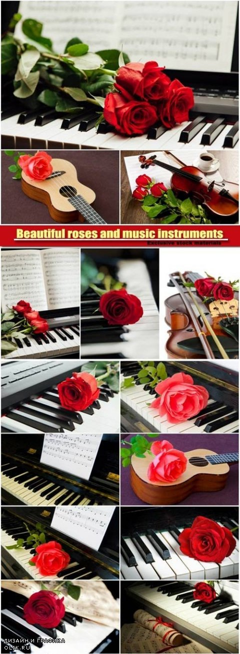 Beautiful roses and music instruments