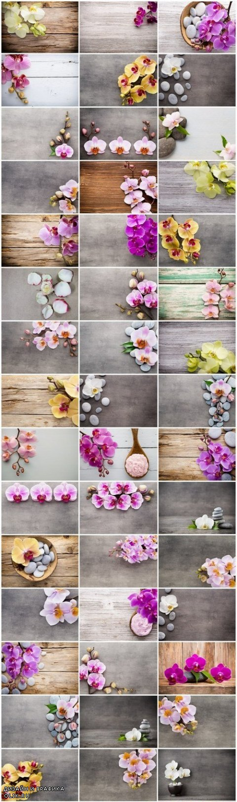 Orchid & SPA Backgrounds - Set of 50xUHQ JPEG Professional Stock Images