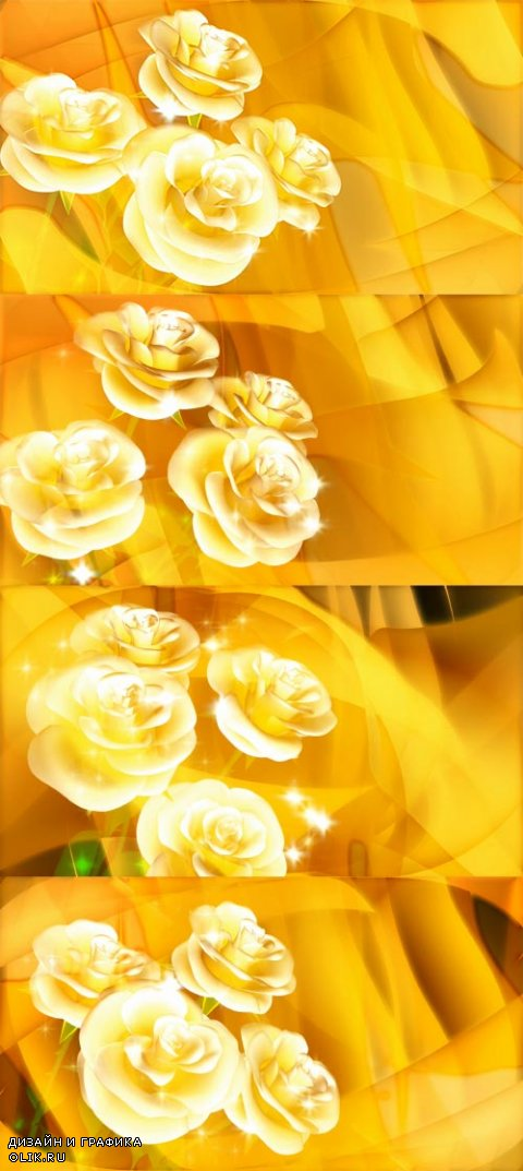 Yellow background footage with a rotating rose