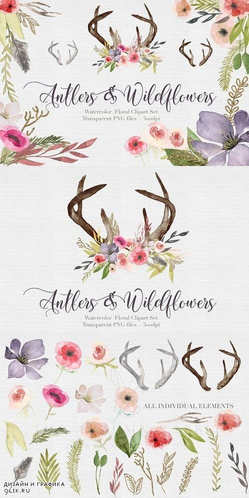 Antlers & flowers Watercolor Clipart 442983