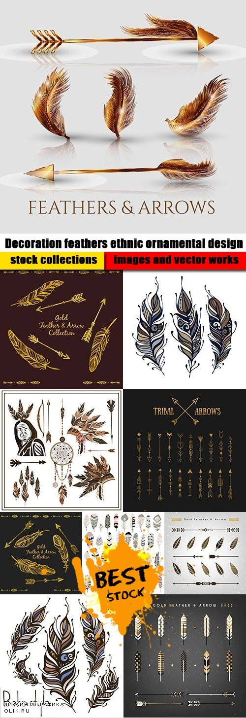Decoration feathers ethnic ornamental design