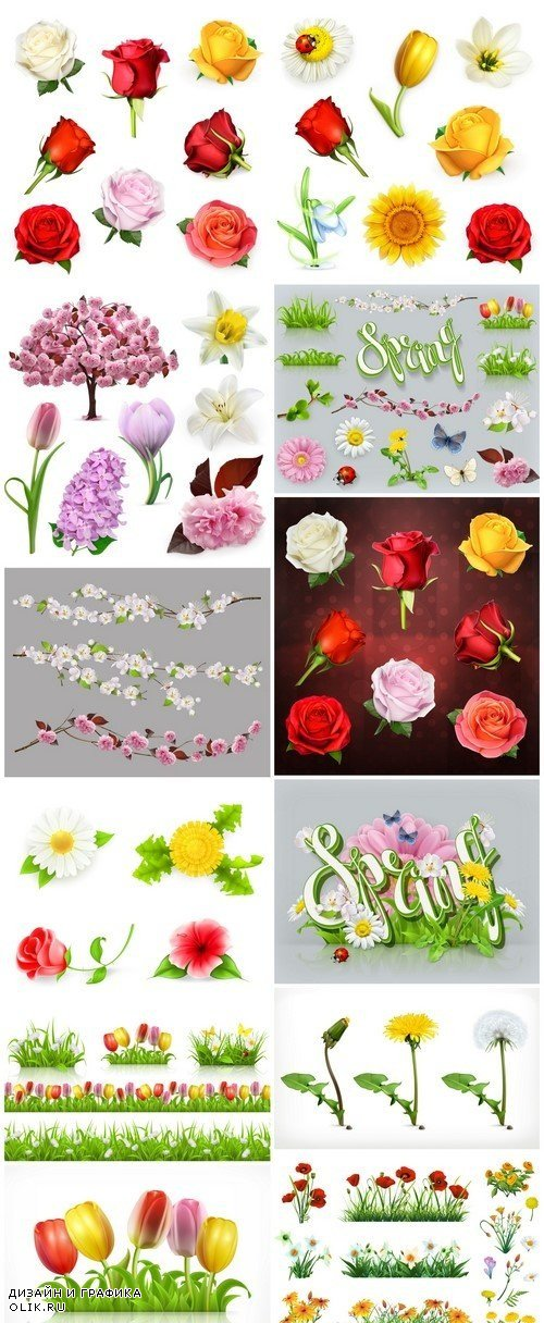 Flowers and grass set of vector elements Nature and ecology 12X EPS