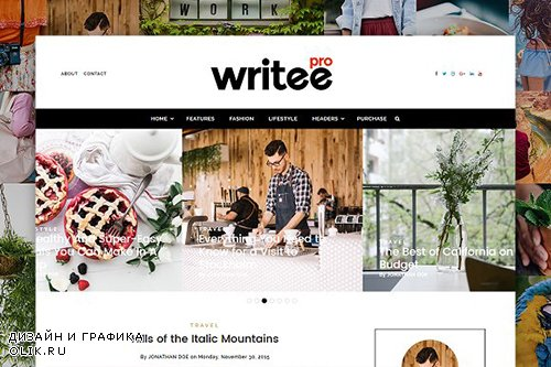 Writee Pro v1.0 - A WordPress Blog Theme - CM 1330620