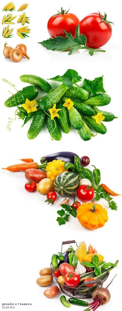 Fresh vegetables, isolated on white background 6X JPEG