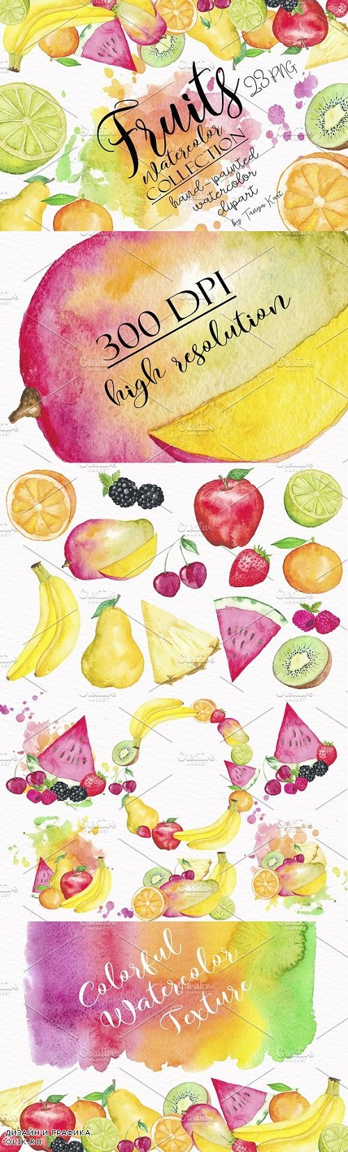 Fruit Watercolor Collection - 1136341