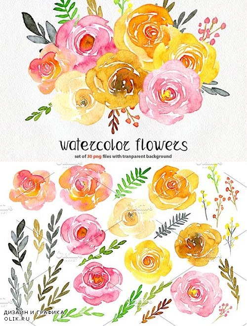 Yellow & pink watercolor flowers 1492180