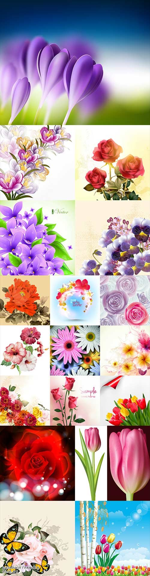 Beautiful vector different flowers