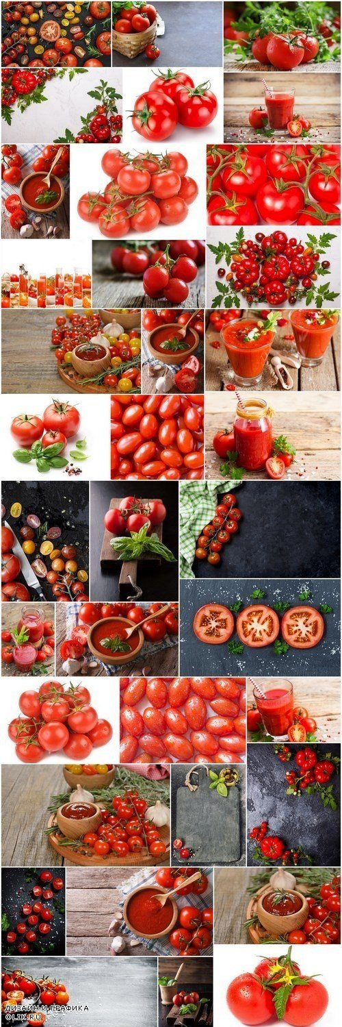 Tasty tomatoes - 47xUHQ JPEG
