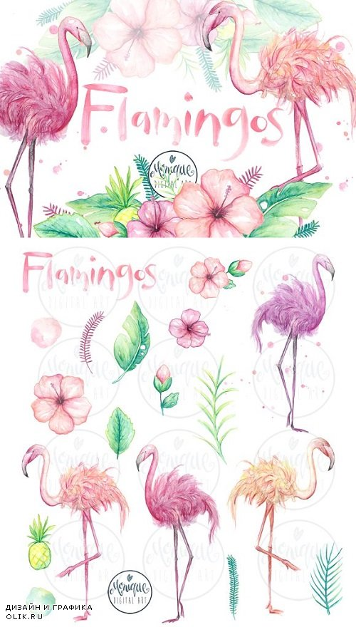 Flamingo clipart, watercolor 1572835