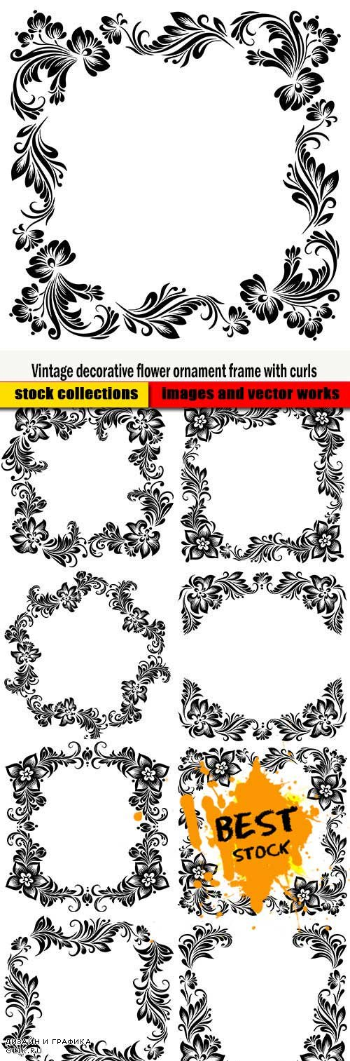 Vintage decorative flower ornament frame with curls
