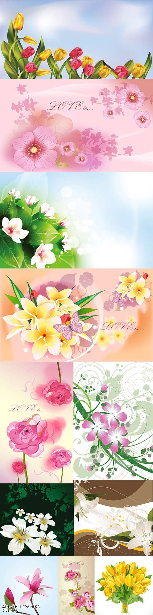 Beautiful vector different flowers - 2
