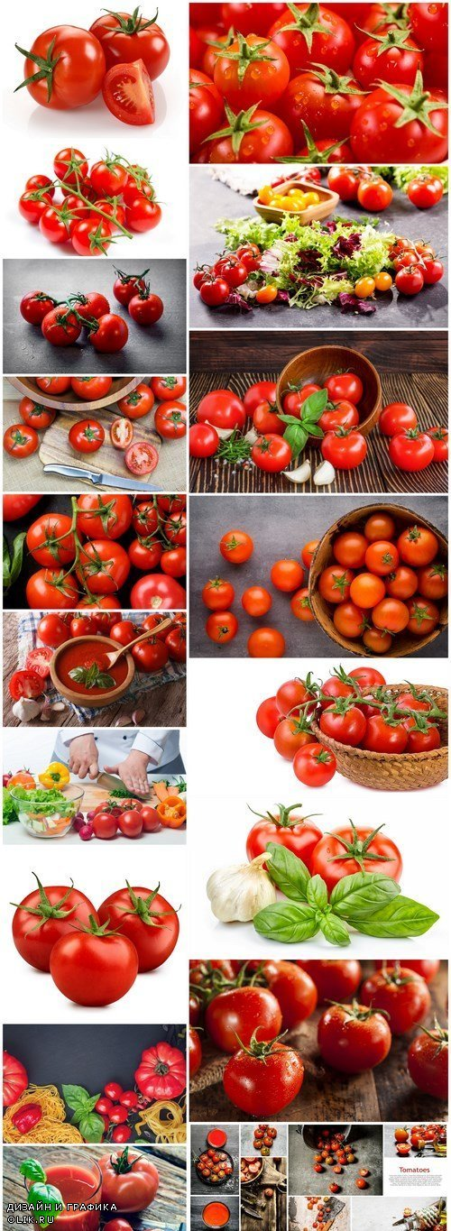 Bright Juicy Tomatoes - 18 HQ Images