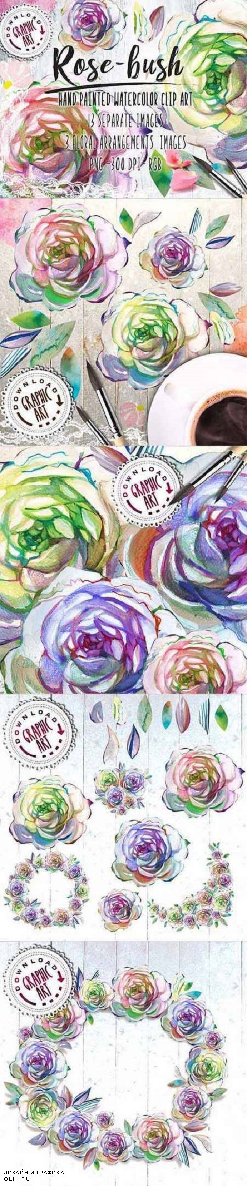 Watercolor Clipart; Rose Wreath - 2391544
