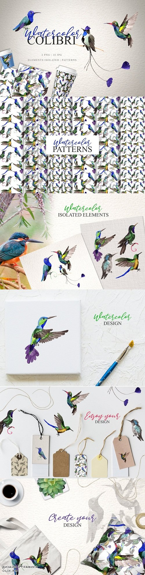 Colibri Watercolor png - 3370170