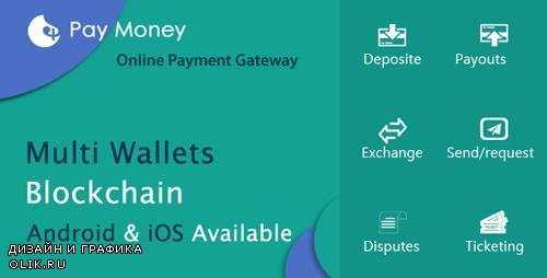 CodeCanyon - PayMoney v1.5 - Secure Online Payment Gateway - 22341650