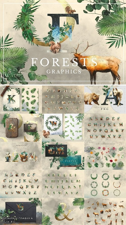 Forest Illustrations Graphics Kit - 3023941