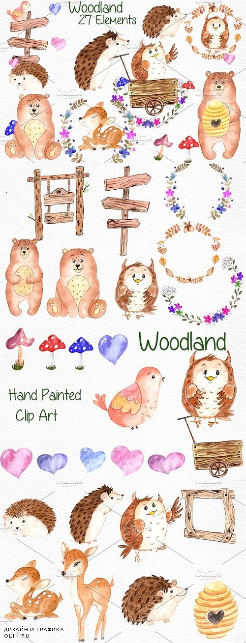 Watercolor forest animals clipart - 638677