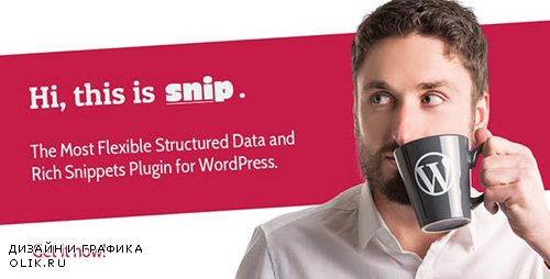 CodeCanyon - SNIP v2.8.1 - Structured Data Plugin for WordPress - 3464341 -