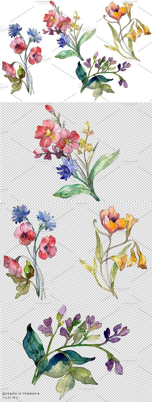 Wildflowers the beauty Watercolor - 3528924