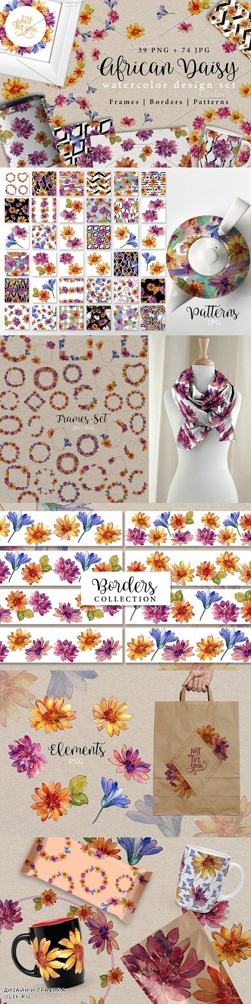 African daisy PNG watercolor set - 2962398