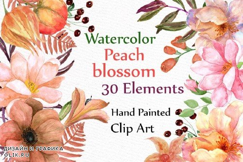 Watercolor flowers clipart - 510208