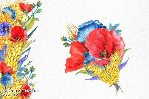 Watercolor poppies clipart - 583780