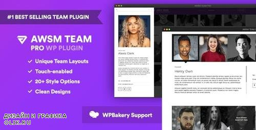 CodeCanyon - The Team Pro v1.3.1 - Team Showcase WordPress Plugin - 17521235