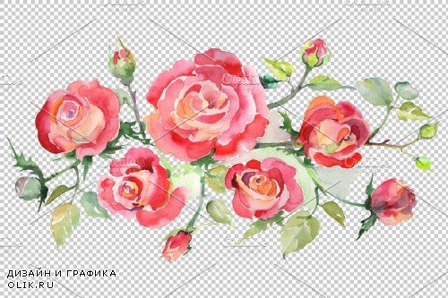 Bouquet with roses red Watercolor - 3667194