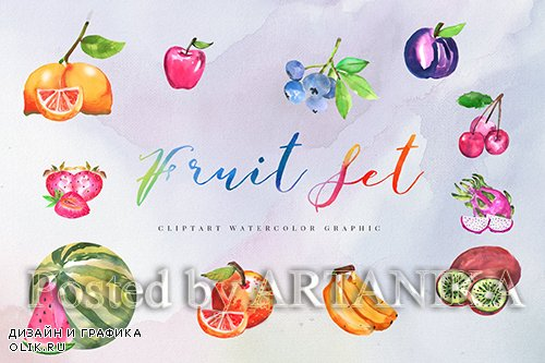 12 Watercolor Tropical Fruit Illustration