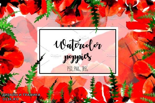Poppy flowers watercolor set - 1692650