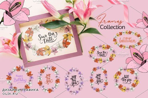 Lilies Vector Collection - 3700457