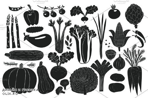 Vegetables Vector Collection - 3509708