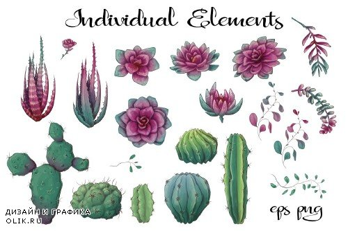 Cacti & Succulents in purple - 3698434
