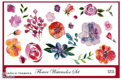 Watercolor flowers set - 520347