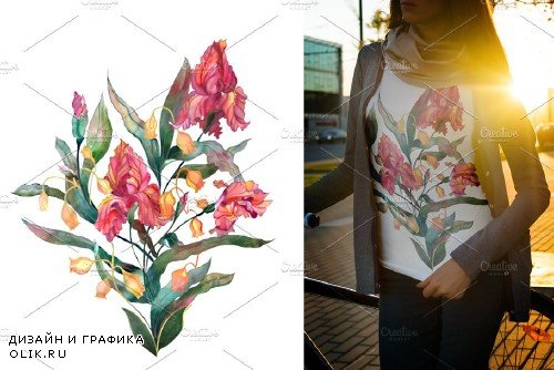 Watercolor iris flowers Set - 1719904