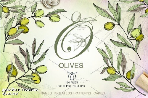 Olives vector EPS watercolor set - 3095353