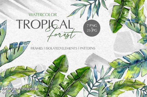 Tropical forest Watercolor png - 3711476