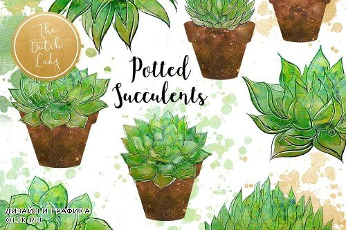 Succulent Potted Plant Clipart Set - 3731852