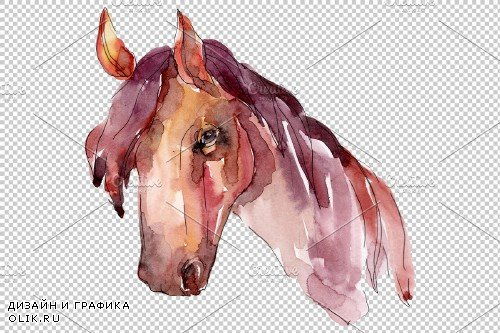 Farm animals: horse head Watercolor - 3734511
