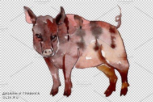 Farm animals: pig (boar) Watercolor - 3733160