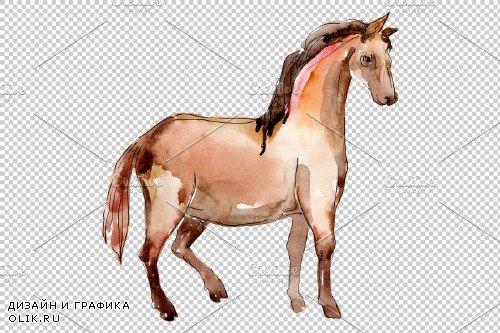 Farm animals:Horse,foal Watercolor - 373221