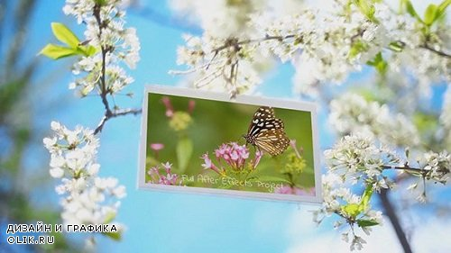 Spring Garden Slideshow 221681 - After Effects Templates